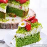 Ciasto leśny mach